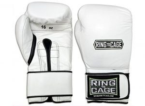 Japanese-Style Training Boxing Gloves 2.0