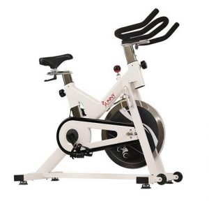 Sunny SF-B1110 Indoor spin Bike