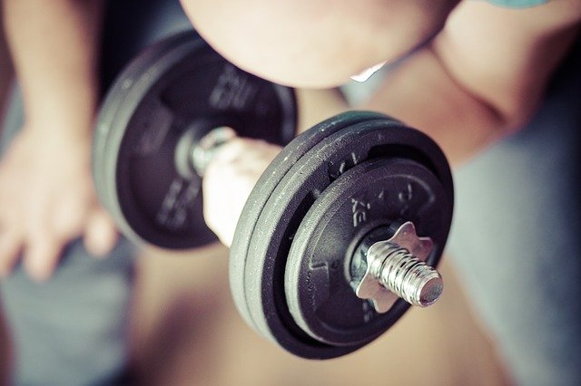 The Best Free-Weights exercise Plan to Build Muscle Mass