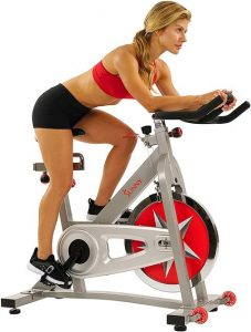 Sunny Health & Fitness Spin Bike Pro Indoor Cycling Exercise Bike